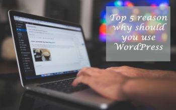 Top 5 reason why should you use WordPress